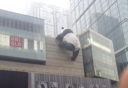 """成都春熙路附近惊现""""熊猫爬墙"""""""