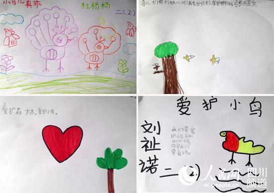 成都小学生:画鸟承诺保护动物