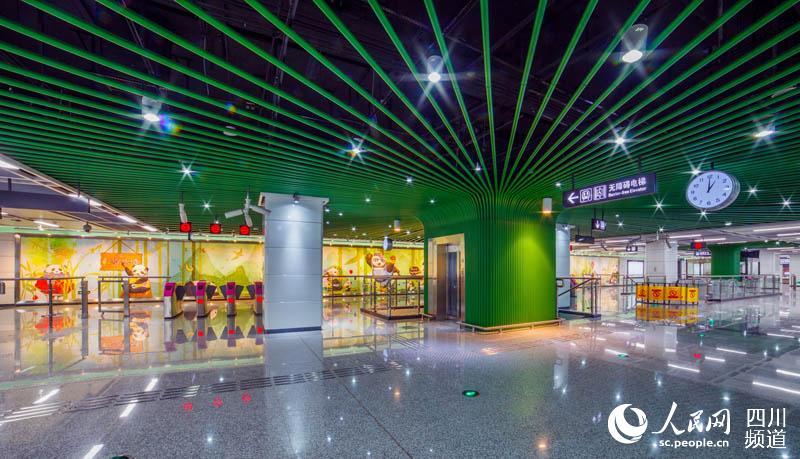 成都地铁3号线一期车站实景图曝光 熊猫大道站多 熊猫