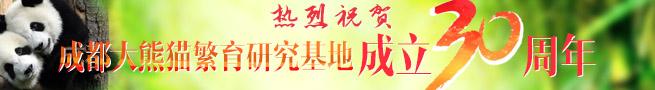 成都大熊猫繁育基地30周年