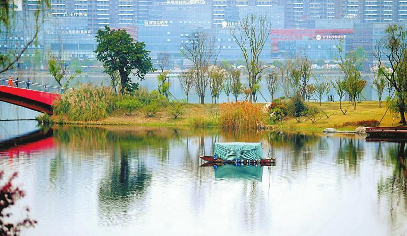 天府新区兴隆湖畔 春色浓郁
