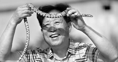 """探秘""""中国第一蛇村"""""""