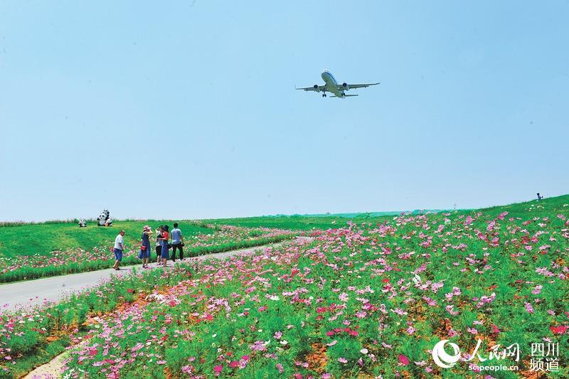 """快来成都""""空港花田"""" 坐拥壮美航域景观"""
