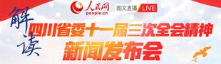 解读四川省委十一届三次全会精神新闻发布会