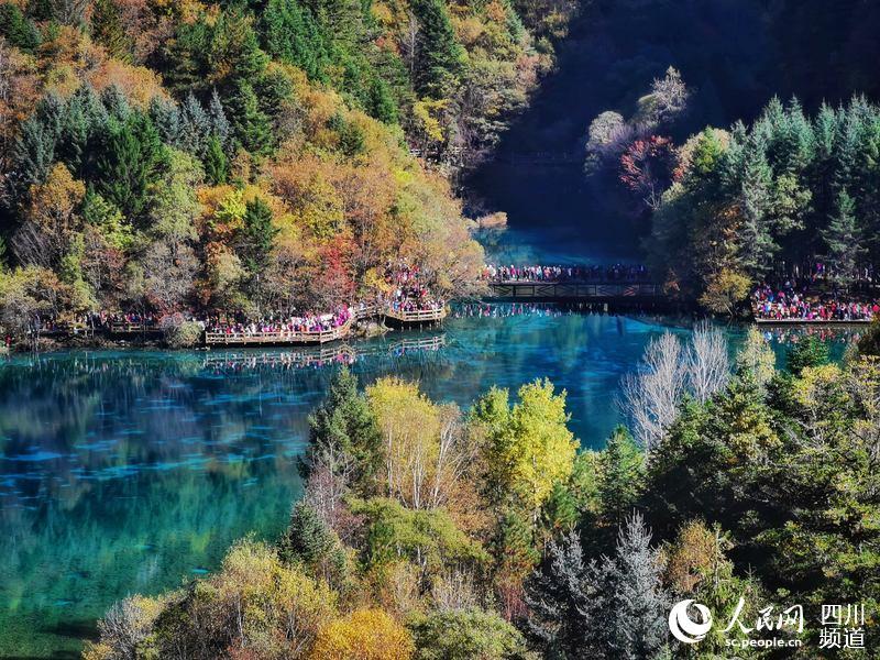九寨沟美丽的秋天(梁枫 摄)