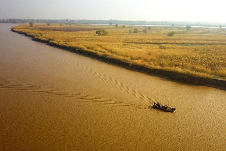 黄河两岸秋色美