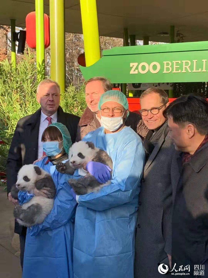 德国柏林动物园举行成都旅德新生大熊猫双胞胎的百日庆典暨命名仪式(图片由德国柏林动物园提供)